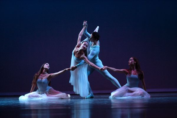 3 to See: Feathered pics in West Palm, ballet and new art in Boca photo